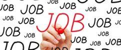 JOB CIAK: I giovani riprendono il lavoro